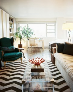 Chevron+Rug+chevron+rug+topped+transparent+Z-pC-H9nHQvl
